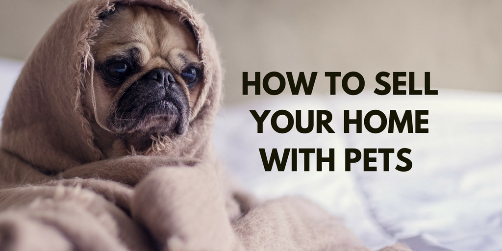How To Sell Your Home With Pets